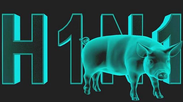 h1n1-domuz-gribi
