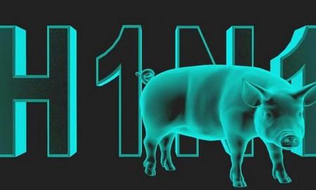 h1n1-domuz-gribi-450x270